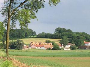 Einzug @ Wohnprojekt | Hasendorf | Niederösterreich | Österreich