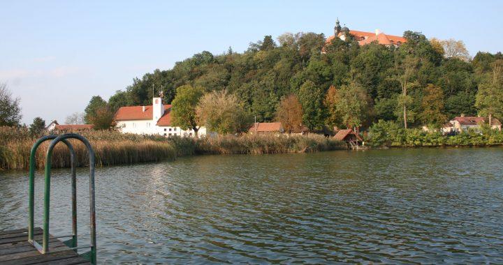 Kruterwanderung im Herbst - Sitzenberg-Reidling - Verliebt